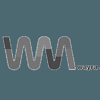 Partners Wayra Crehana
